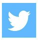 Archives Twitter Button