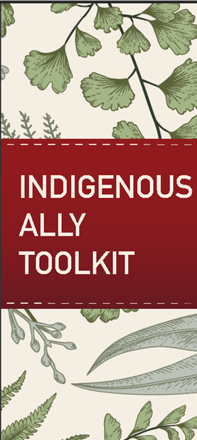 Indigenous Ally Toolkit brochure sample