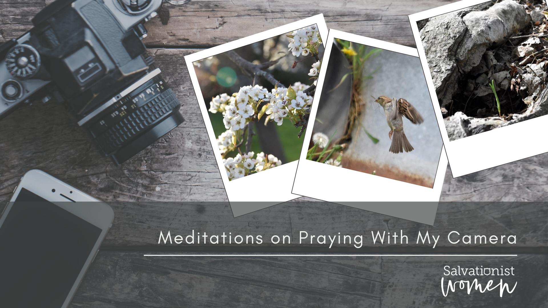 Meditations on Praying With My Camera